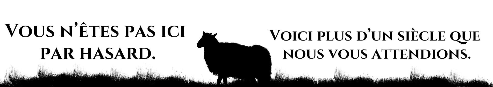 Bienvenue aux éditions du mouton noir